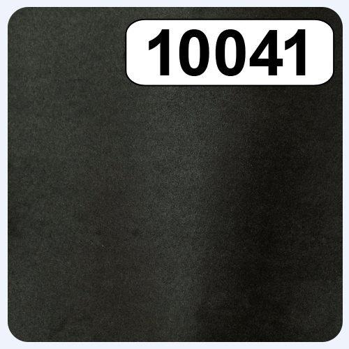 10041