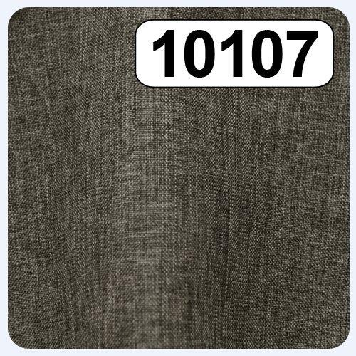 10107