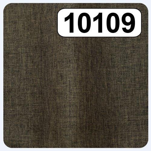 10109