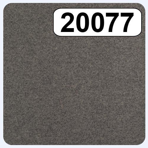 20077