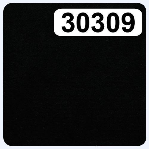 30309