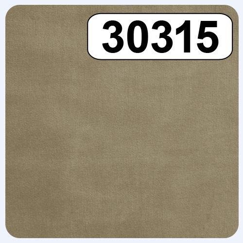 30315