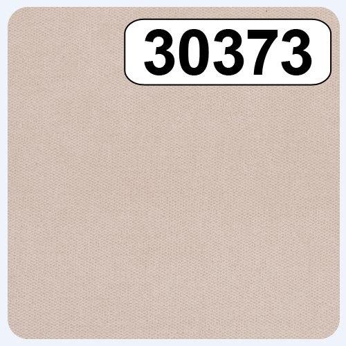 30373